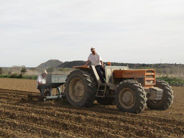 plantando-con-tractor
